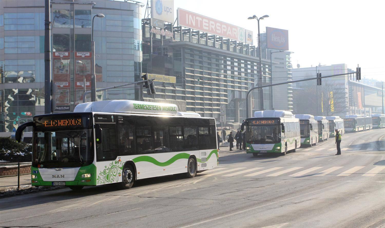 buszok 02